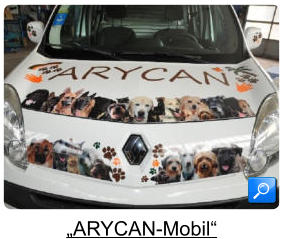 """ARYCAN-Mobil"""